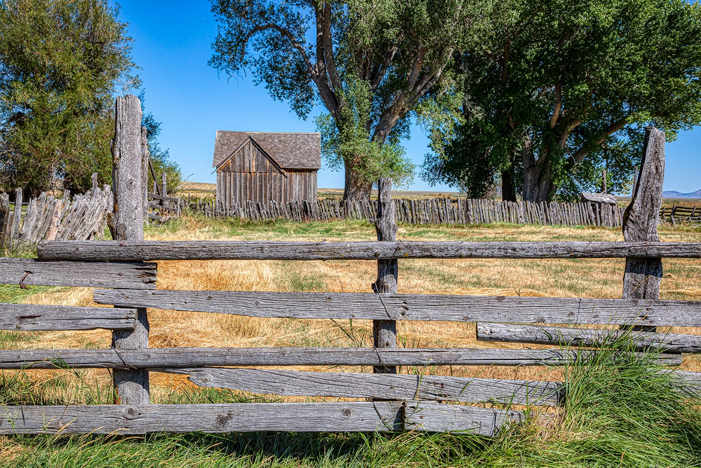 Sodhouse Ranch. Historic building in the distance framed by very large old cottonwood trees. Old split raid fence in the foreground.